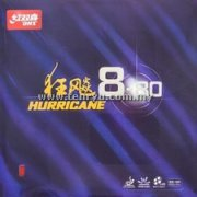 DHS - Hurricane 8-80